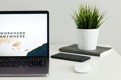 Image of laptop and plant